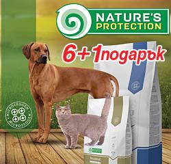 Nature's Dog