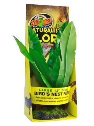 Zoo Med Naturalistic Flora™ Birds Nest Fern - тропическо растение с тежка основа, 20 см.