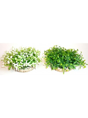 Sydeco - Water Ball Maxi - Изкуствено аквариумно растение - 18 см.