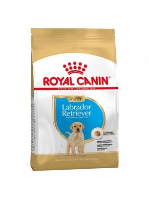 Royal Canin Labrador Retriever Puppy - суха храна за кучета от порода Лабрадор Ретривър до 15 месеца - 12 кг.