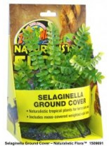 Zoo Med Naturalistic Flora™ Selaginella Ground Cover - тропическо растение с тежка основа, 20 см.