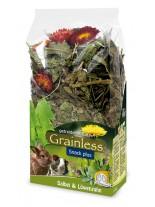 JR Farm - Беззърнена допълваща храна за гризачи с градински чай и глухарче