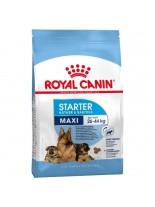 Royal Canin MAXI Starter  M&B –  суха гранулирана храна за отбиване на кученца, бременни и кърмещи майки от едрите породи - 4 кг.