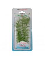 Tetra - Ambulia - Изнуствено растение за аквариум - S 15 см.