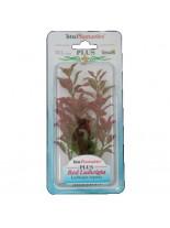 Tetra - Red Ludwigia - Изнуствено растение за аквариум - M 23 см.