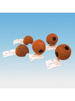 JBL Cocos Cava 1/2L - декорация - укритие от черупка на кокосов орех