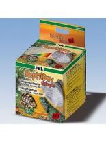 JBL ReptilDay Halogen 75W+ - терариумна крушка - халогенна