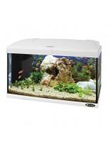 Ferplast Aquarium Capri 60 LED WHITE - аквариум с пълно оборудване и LED осветление - 60 x 31,5 x h 39,5 см - 60 л. - бял - нов код 65016111