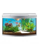 Tetra - AquaArt Evolution Line - Напълно оборудван аквариум с модерен дизайн - 770x380x482 мм. - обем 100 л.