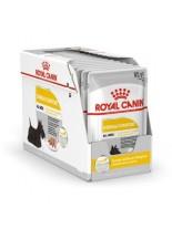 Royal Canin CCN Dermacomfort Loaf Pouch - пауч за кучета склонни към раздразнена и сърбяща кожа - 85 гр.