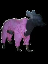 Dogyfashion Дъждобран, Размер 0, мини породи (мини пинчер, чихуа хуа и други)