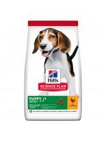 Hill's - Science Plan™ Puppy Healthy Development™ Medium Chicken - За подрастващи кученца от средни породи (с пиле) - 12 кг.