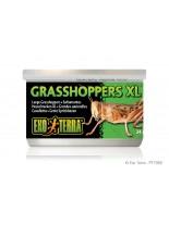 Exo Terra - Grasshoppers XL - консервирани едри щурци за влечуги и земноводни - 34 гр.