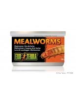 Exo Terra - Mealworms - консревирани дълги червеи за влечуги и земноводни - 34 гр.
