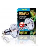 Exo Terra - Halogen Basking Spot - халогеново осветление за терариуми - 75 W.