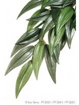 Exo Terra - Ruscus Silk Medium - висящо терариумно растение