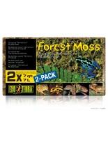 Exo Terra - Forest Moss - натурален субстрат за терариум - горски мъх - 2 х 7 л.