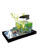 Zen Artist 15л - напълно оборудван черен аквариум