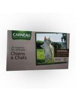 Chiens et Chats -