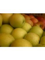 Ябълка сорт Златна превъзходна - 1.50 - 2.00 м.