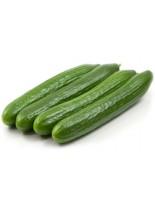 Краставици - Лонг Англес - 2 гр. - около 35 семена в 1 гр.