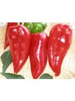 Пипер - Призренка (тип капия) - 2 гр. - около 280 - 300 бр. Семена