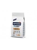 Advance Dog Yorkshire Terrier Adult - специална формула разработена да се грижи за козината и кожата на йоркширските териери - 1.5 кг